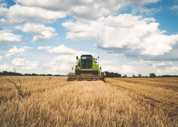 Agricultura, agropecuaria