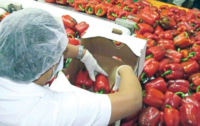 agropecuaria productos agricolas dr cafta