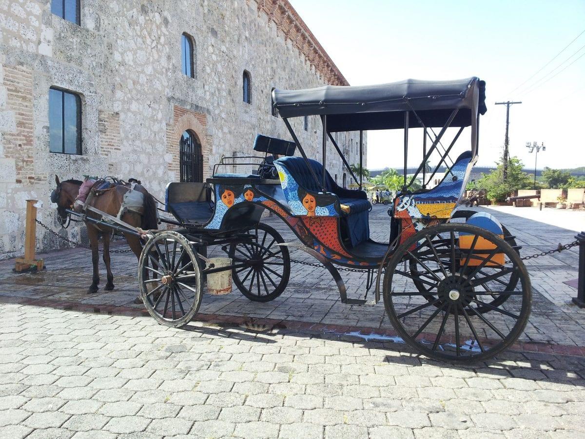 caballos ciudad colonial