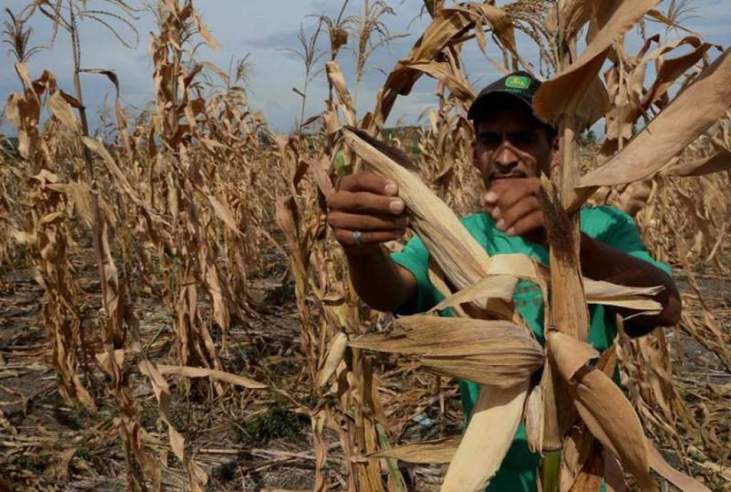 cambio climático pobreza