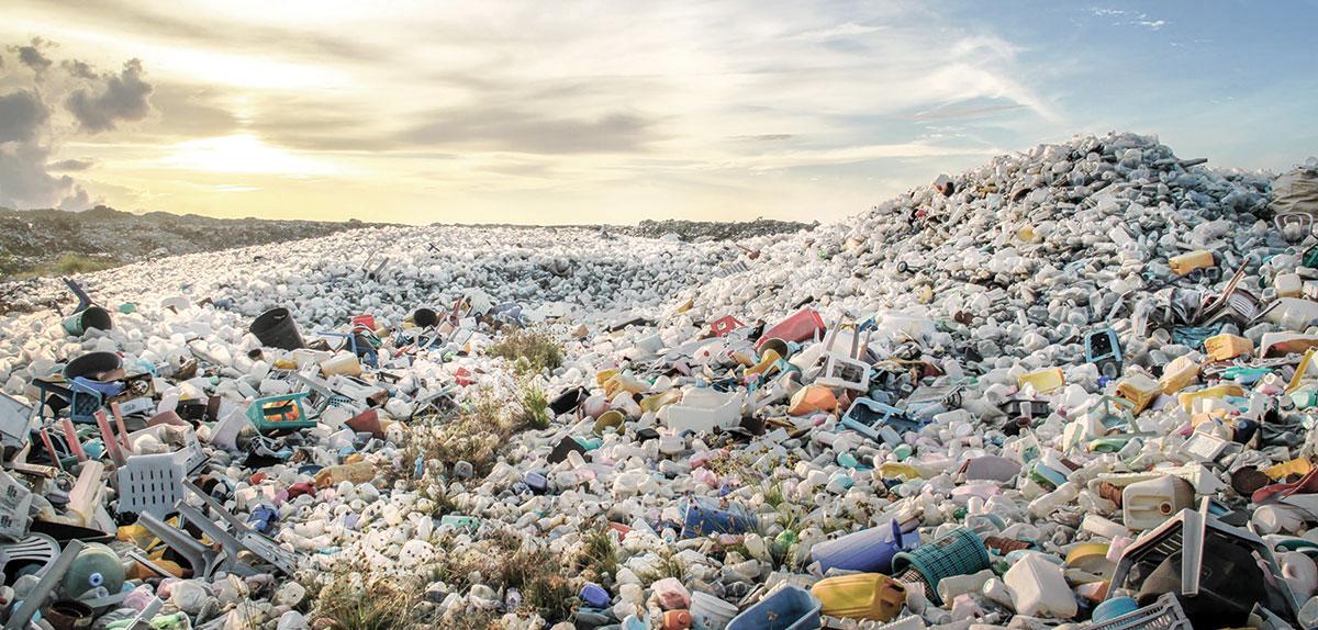 la isla de plastico (2)