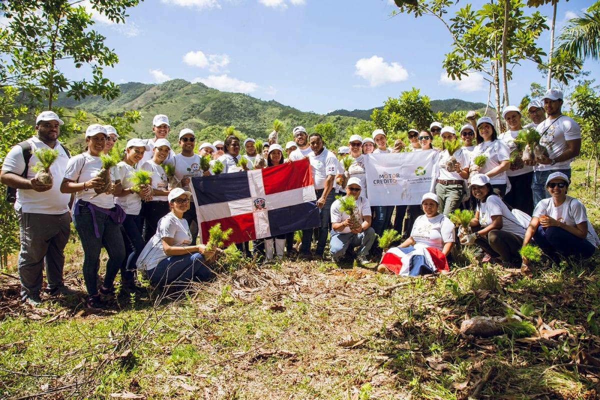 motor crédito operativo reforestación 2019