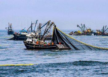 Ya con el acuerdo entre Bruselas y Londres cerrado, ambas partes deben fijar las cuotas pesqueras definitivas para estas poblaciones, algunas de mucha importancia como la merluza Norte, el gallo del mar Céltico, la caballa o la bacaladilla. | Periódico Gestión.