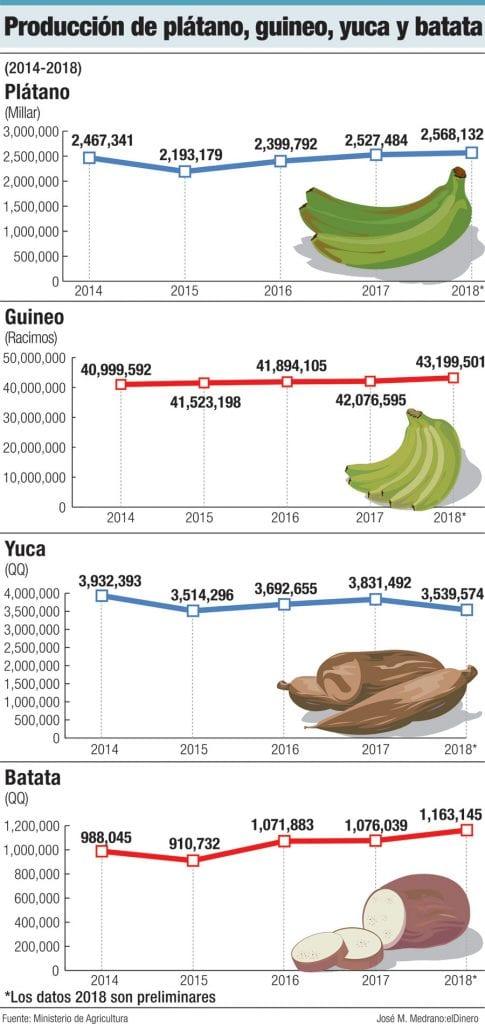 produccion de platano guineo yuca y batata