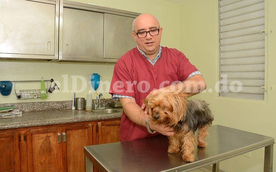 El veterinario Tull Datt en una consulta en su clínica