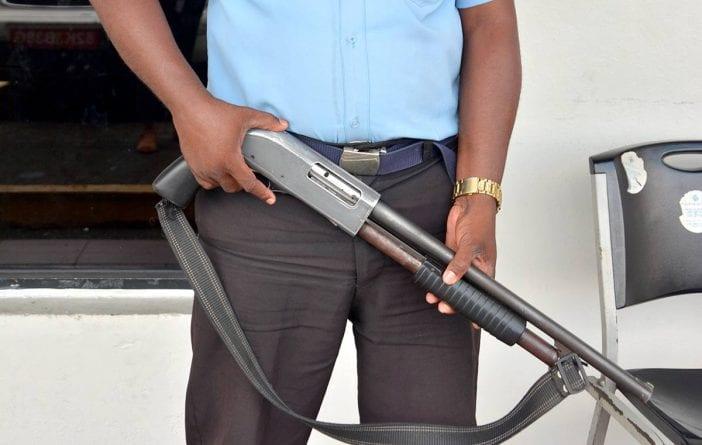 armas de fuego seguridad privada