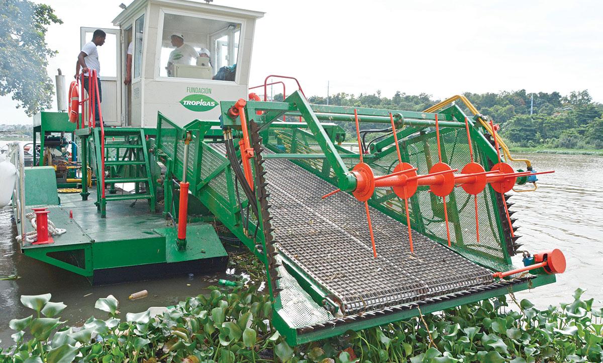 barcos recolectores ribera verde ozama