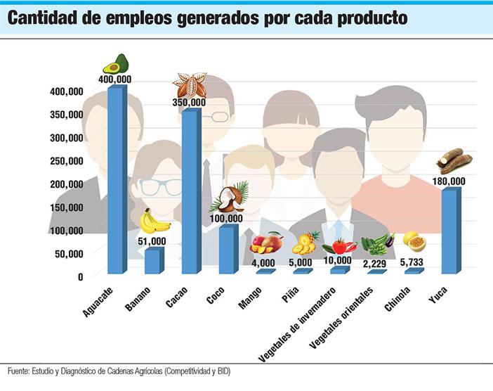 empleos generados por aguacate banano
