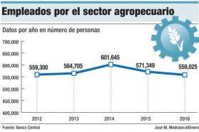 empleos sector agropecuario