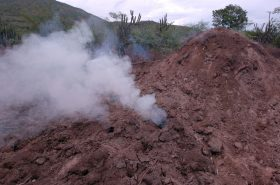 horno carbon vegetal haiti