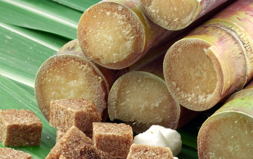 industria del azucar