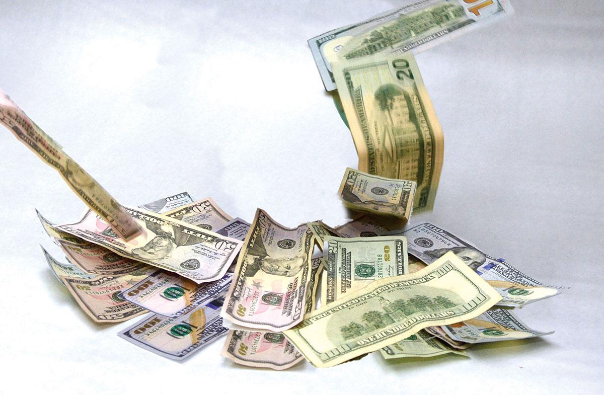 ingresos de divisas deuda publica