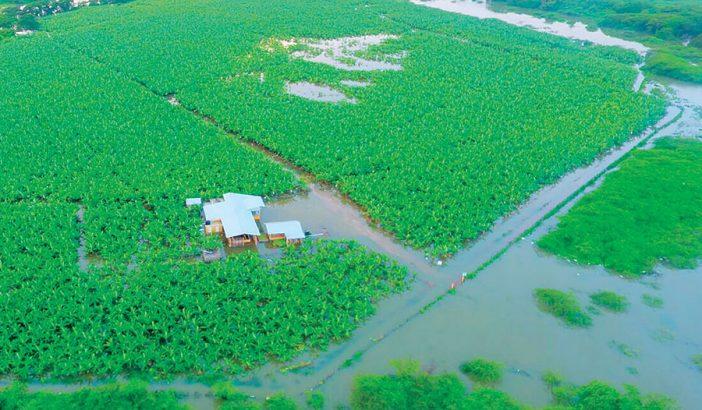 inundaciones productores agricolas