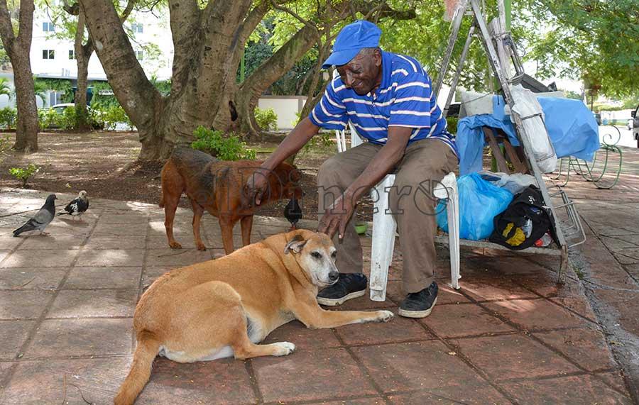 Manolo Luciano junto a sus dos compañeras caninas Duquesa y Mayra en el parque. | Lésther Álvarez