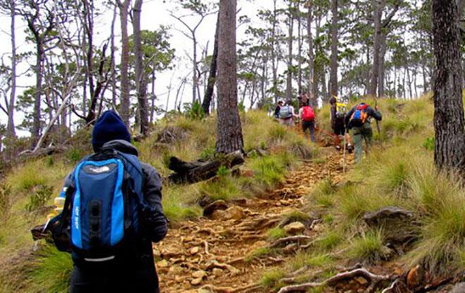 El montañismo se practica en equipo para mayor seguridad, requiere de un sistema cardiovascular sano y piernas firmes.