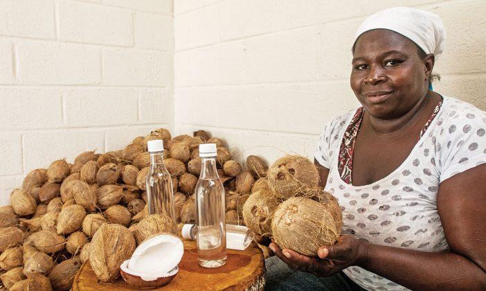 productora de aceite de coco
