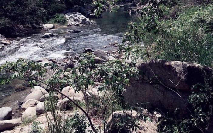 rio bao
