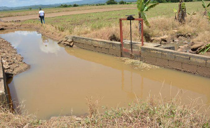 ruta turistica de arroz 4